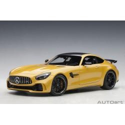 Mercedes-AMG GT R *1/18*
